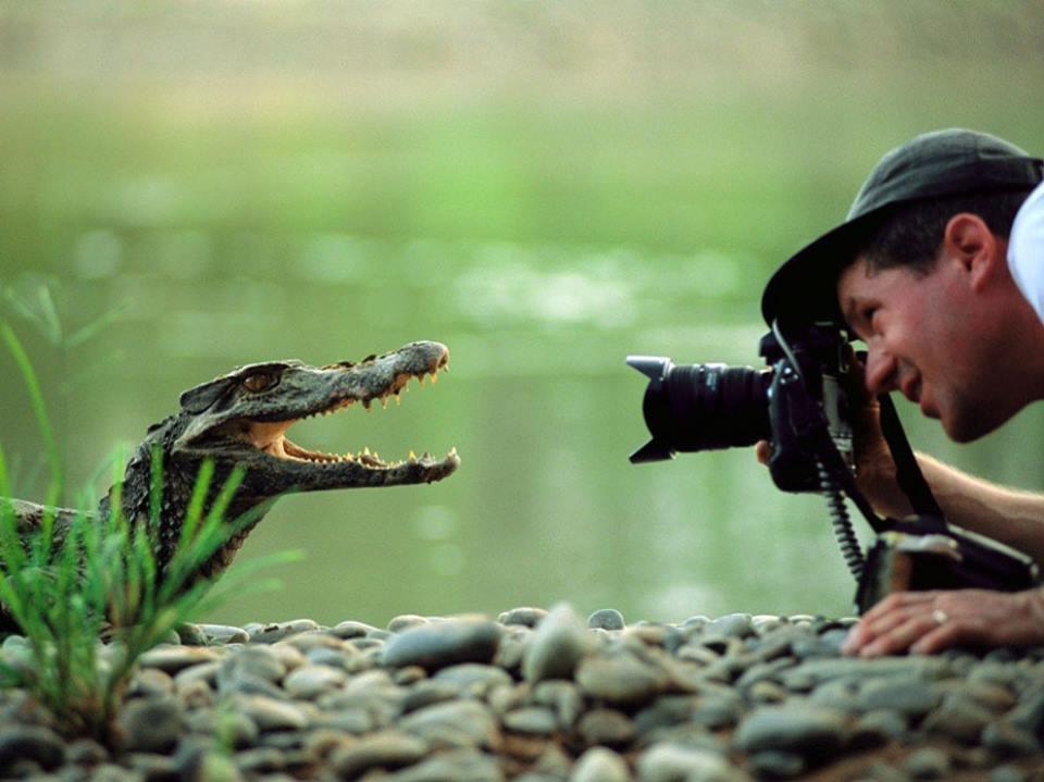 Best of des photographies de National Géographique