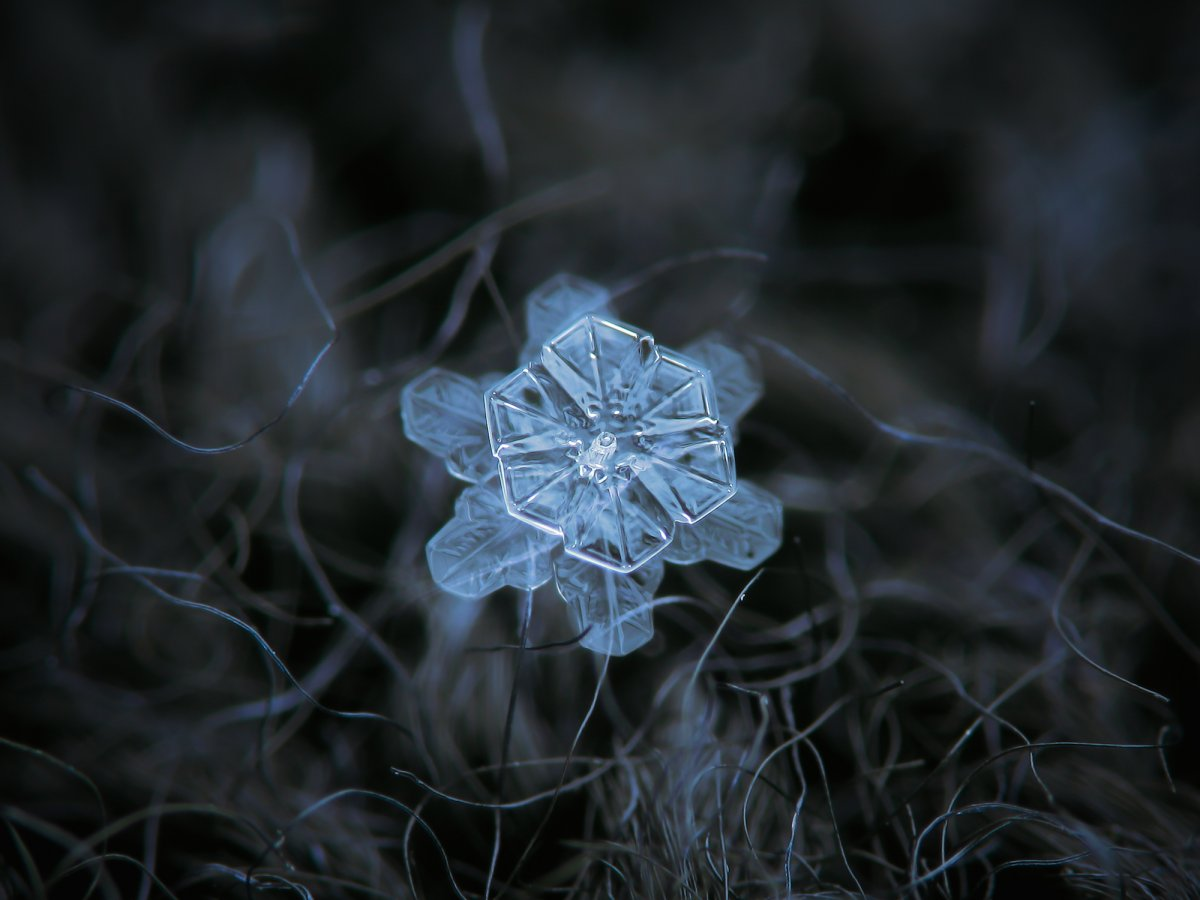 last-but-not-least-this-snowflake-is-three-dimensional-in-the-coolest-way